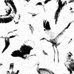 Sergiu Matiș: Extinction Room (Hopeless.)